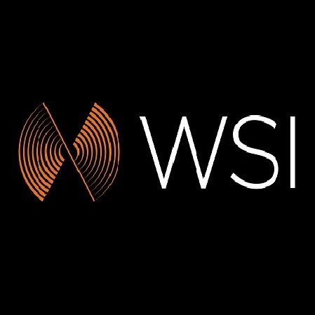 WATCHES STATION INTERNATIONAL - WSI